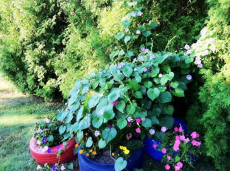 In A Neighbor's Back Yard by Tanya Renee Herb