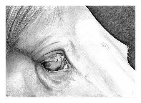 In His Eyes by Liz Oliver