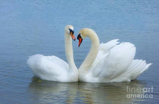 In Love                         by Marlena Nowaczyk