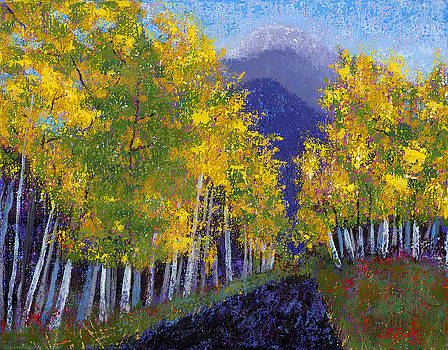 In Love with Fall River Road by Margaret Bobb