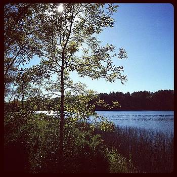 In Minnesota At Embarrass Lake At My by Nadine Rippelmeyer