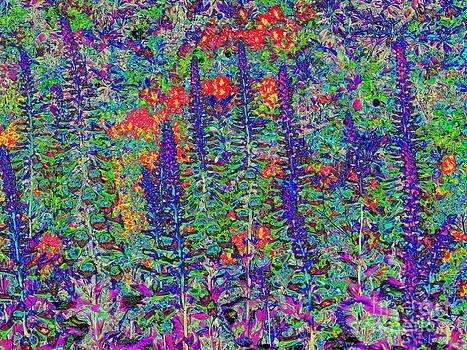 In My Garden by Diane  Miller