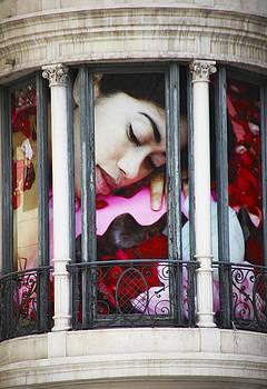 In my Window by Robert Seidman