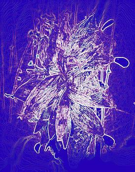In purple by Slawek Sepko
