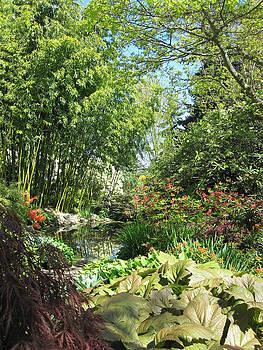Marilyn Wilson - In the Finnerty Gardens