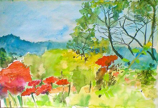 In The Garden by Vaidos Mihai