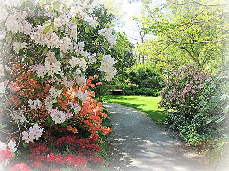 Marilyn Wilson - In the Gardens