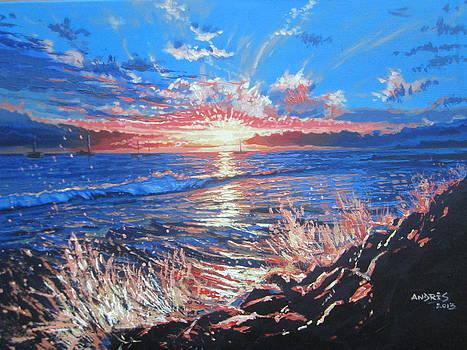 In The Morning Light by Andrei Attila Mezei