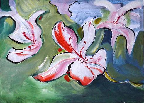 In the Pink by Gloria Dietz-Kiebron