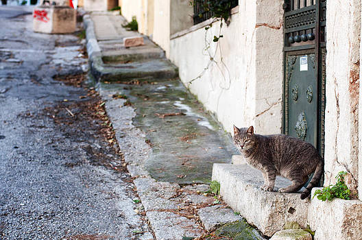 In the streets of Athens by Laura Melis