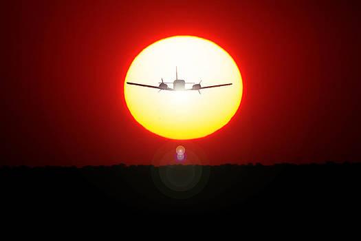 In the Sun by Paul Job