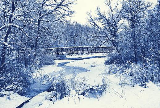 In the winter by Slawek Sepko