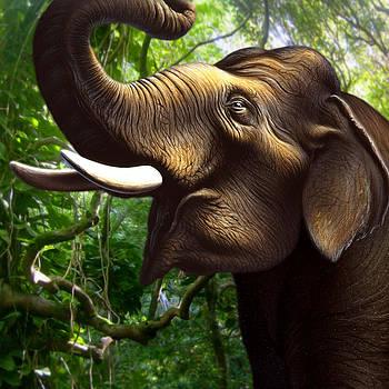 Indian Elephant 1 by Jerry LoFaro
