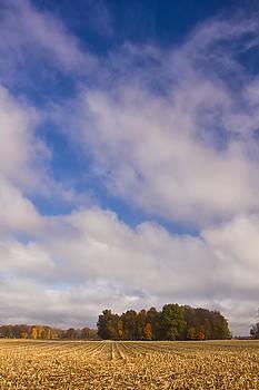 Indiana Flall Landscape by Michael Huddleston
