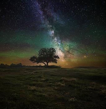 Infinity by Aaron J Groen