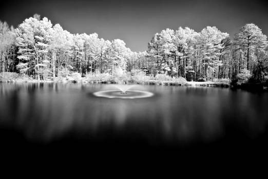 Infrared Study #246 by Floyd Menezes