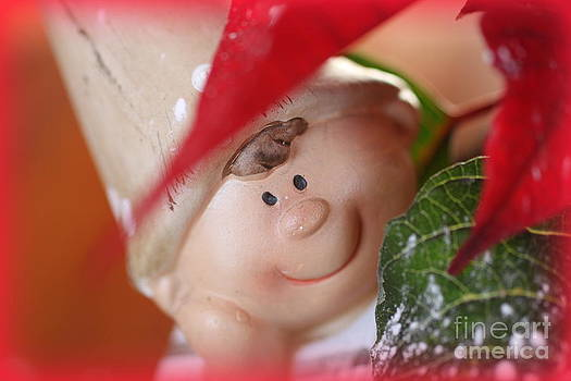 Inquisitive Little Elf by Frances Hodgkins