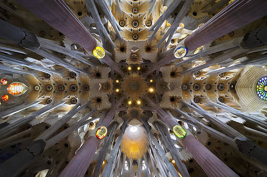 Inside Gaudi's Dream by Jack Daulton