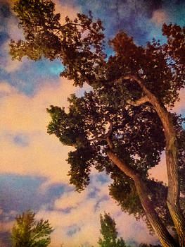 Mary Lee Dereske - Inspired by Maxfield Parrish