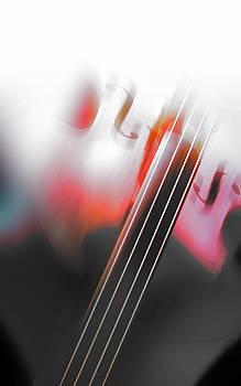Instrumental Blur by Florin Birjoveanu