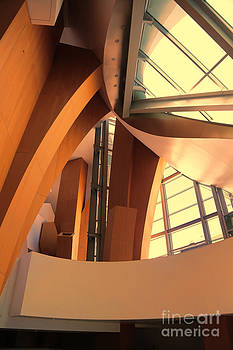 Chuck Kuhn - Interior Disney Hall