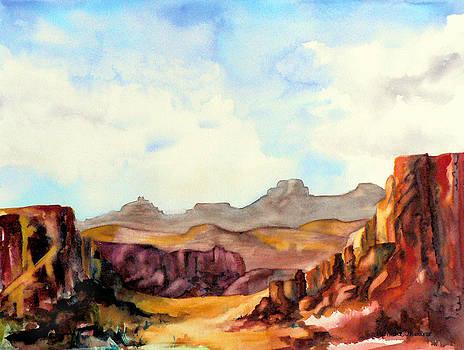 Into the Canyon by Pamela Shearer