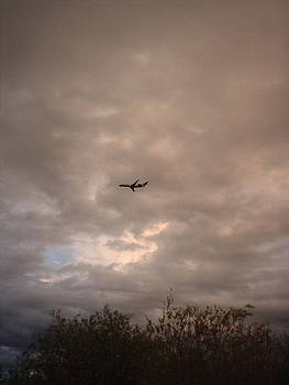 Into The Evening Sky by Yvette Pichette