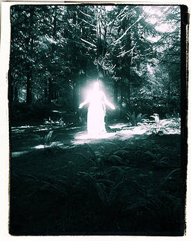 Into the light #4 by Sheba Goldstein