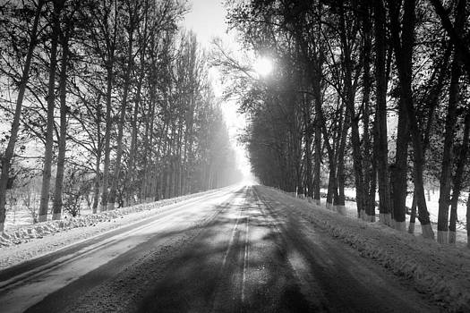 Into the light by Stephanus Le Roux