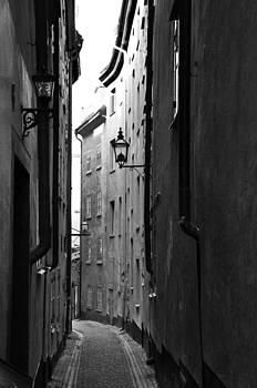 Into the llight by Nick Barkworth