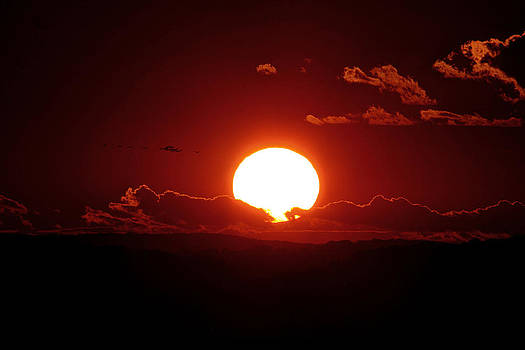 Into The Setting Sun by David M Jones