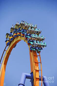 Phil Degginger - Inverted Roller Coaster