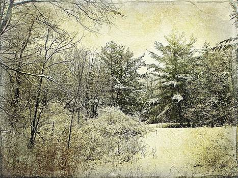 Invitation To Winter  by Dianne  Lacourciere