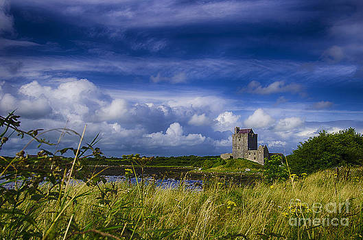 Ireland - Dunguaire Castle  by Giovanni Chianese