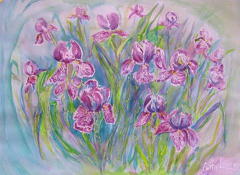 Iris  by Cathy Long