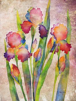 Hailey E Herrera - Iris Elegance on Pink