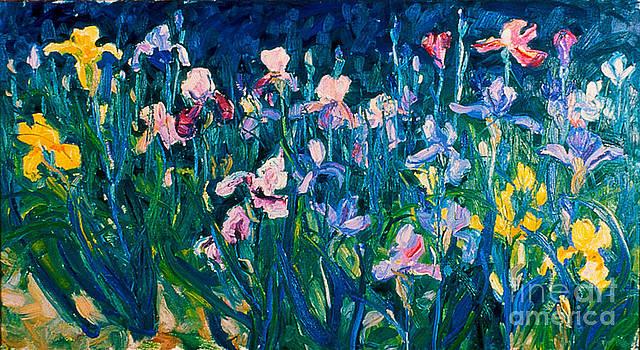 Iris Garden by Brian Mahieu