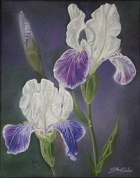 Iris Pair by Cynthia Snider