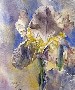 Alfred Ng - iris with blue-watercolor