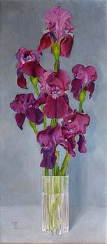 Irises - the fairest by Ralph Taeger