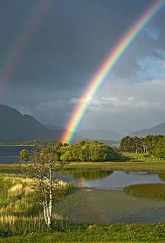Jane McIlroy - Irish Rainbow