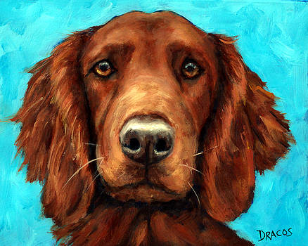Irish Setter Portrait by Dottie Dracos