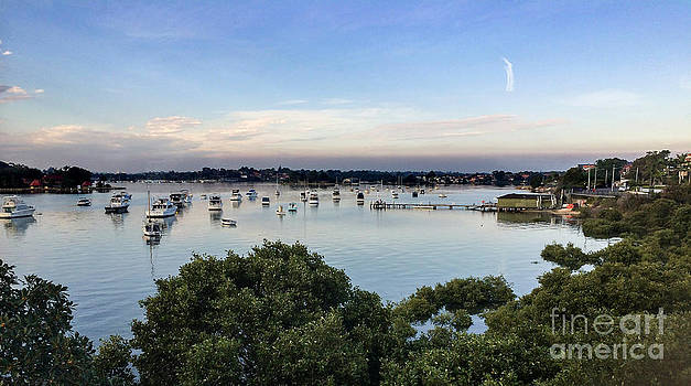 Iron Cove Bay by Tomislav Vucic