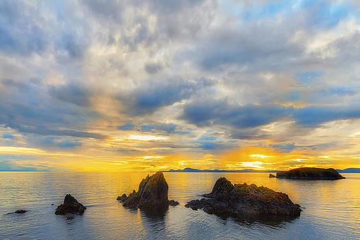Island Fever by Ryan Manuel