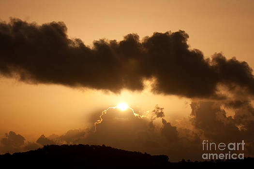 Island Morning Light by Jared Shomo