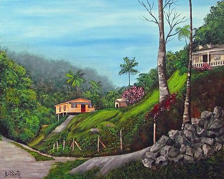 Island Mountains by Gloria E Barreto-Rodriguez