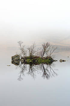 Island of Trees Reflection by Grant Glendinning