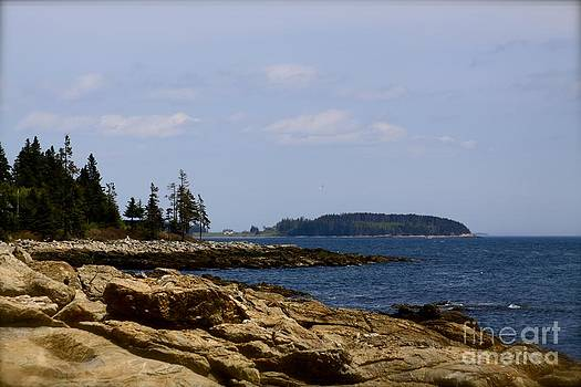 Island View by Belinda Dodd
