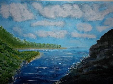 Island View by Michelle Treanor