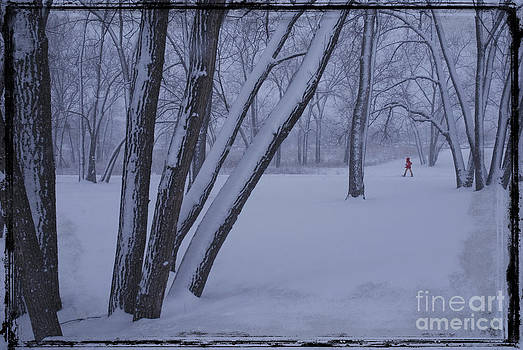 It snowed today by Jim Wright